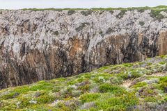 Roślinność i falezy w Cabo De Sao Vincente Obrazy Stock