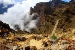 Roślinność przy wierzchołkiem góra Palma Zdjęcie Stock