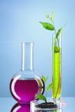 rośliny badają tubki Obraz Stock