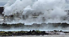 rośliny geotermiczna władza Obrazy Royalty Free