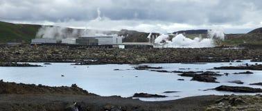 rośliny geotermiczna władza Obraz Royalty Free