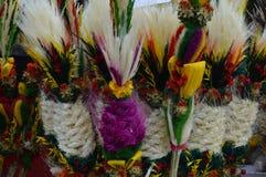 Rośliny i kwiatu suchy skład Zdjęcia Stock