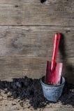 Rośliny narzędzie z drewnianym blackground Obraz Royalty Free