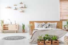 Rośliny przed drewnianym łóżkiem w białym sypialni wnętrzu z dywanikiem blisko spiżarni Istna fotografia fotografia stock