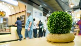 Rośliny stołowa dekoracja przy sklepem Obrazy Stock