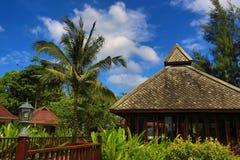 Rośliny w hotelowym terenie, palma, Phra Ae plaża, Ko Lanta, Tajlandia Fotografia Stock