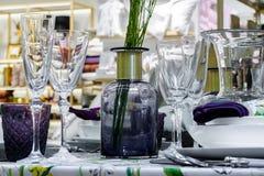 Rośliny w wazowych i błyszczących szkłach Obraz Stock