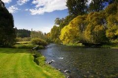 Río con el cielo azul y los árboles Fotografía de archivo