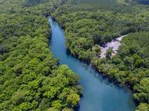 Río de Choctawhatchee - primaveras de Morrison Fotos de archivo