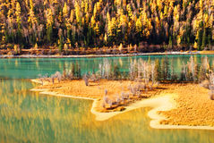 Río de Kanasi Foto de archivo