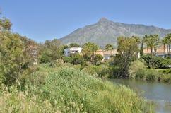 Río de la boca Imagen de archivo