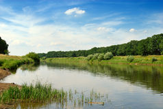 Río de Odra en Polonia Imágenes de archivo libres de regalías