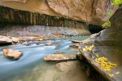 Río de precipitación Imagen de archivo