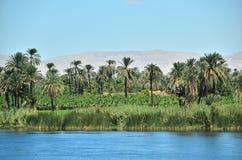 Río del Nilo Fotografía de archivo libre de regalías
