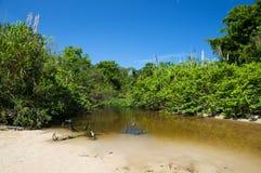 Río en la playa Imágenes de archivo libres de regalías