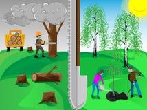 Rośliien drzewa ilustracja wektor