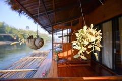 Roślina garnka dekoracja Fotografia Royalty Free