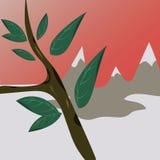 Roślina w górach Obraz Royalty Free