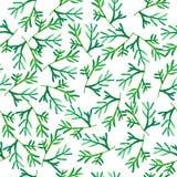Rośliny bezszwowa akwarela Zdjęcie Royalty Free
