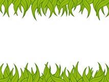 rośliny granic Fotografia Stock