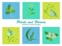 Rośliny i kwiaty Fotografia Stock