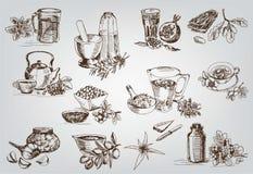 Rośliny i ziele w ludowej medycynie Zdjęcie Royalty Free