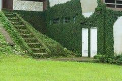 Rośliny pokrywa dom Obraz Stock