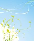 rośliny wiosna Zdjęcia Royalty Free
