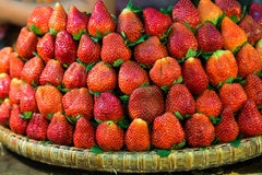 Ro på rad av nya saftiga trädgårds- jordgubbar för återförsäljnings- sal arkivfoton