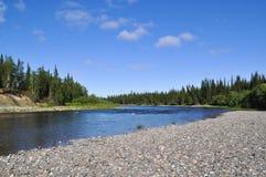 Río septentrional del taiga en un día soleado Fotografía de archivo