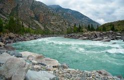 Río siberiano Katun en las montañas de Altai Fotos de archivo libres de regalías