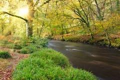 Río Teign Foto de archivo libre de regalías