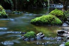 Río tranquilo Foto de archivo libre de regalías