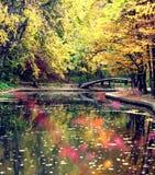 Río y árboles otoñales Fotos de archivo libres de regalías