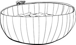 Roach on Salad Bowl Outline Stock Images