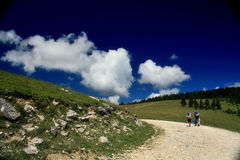 On the road. Mountaineers on the road in Apuseni mountains Royalty Free Stock Images