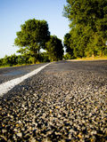 Road. Lined road curving through woods with motion blur showing speed Royalty Free Stock Images