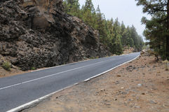 Road. To pico del teide on teneriffa stock image