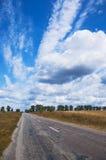 Road. Old asphalt road passes through farm fields Stock Photo