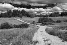 Road. Rural road through fields and woods in Kareliya Stock Photography