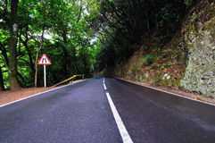 Road. A road in the mountains on Tenerife Royalty Free Stock Image