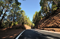 Road. A road in the mountains on Tenerife with lava Stock Images