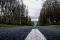 Road. Ground level view of a rural road on winter royalty free stock image
