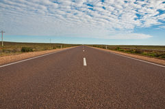 The road stock image