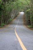 Road. New road go to the national park thailand Stock Photos