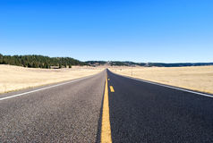 Road. To Grand Canyon North Rim surrounded by meadow Royalty Free Stock Image