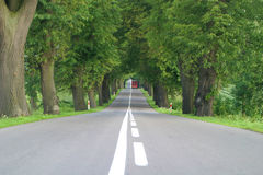 Road 2. Sunny road in the summer Royalty Free Stock Images