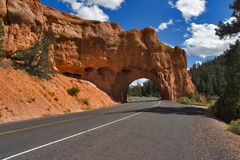 The road. A red canyon and road in state of Utah in the USA stock photos