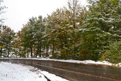 Road. Removed snow in winter Royalty Free Stock Photography