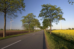Road. Leading through rural landscape Stock Images